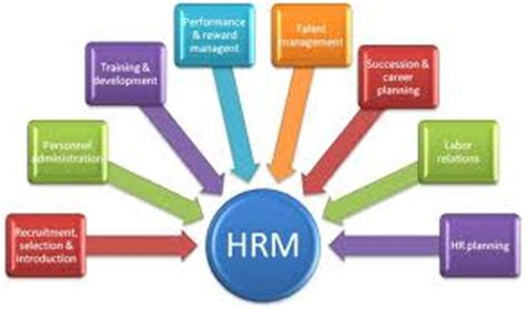 Free Human Resource Management HRM Essay and - Samples
